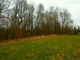 (Prodej, pole, 1550 m2, Horní Bludovice), foto 3/4