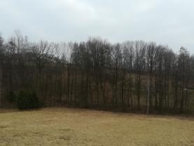 (Prodej, les, 2539 m2, Ostrava - Radvanice), foto 3/3