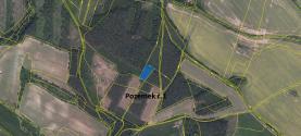 Prodej, les, 16 261 m2, Manětín - Luková