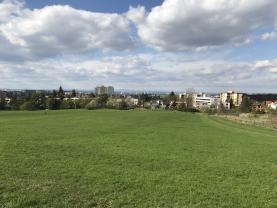 Prodej, louka, Hradec Králové