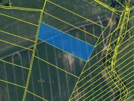 Prodej, pole, 6720 m2, Zástřizly