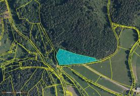 Prodej, les, 6091 m2, Čkyně