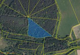 Prodej, les, 12665 m2, Lhenice - Hoříkovice