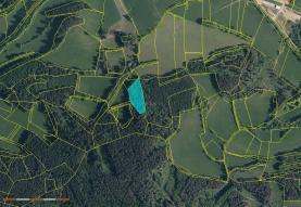 Prodej, les, 29324 m2, Volyně