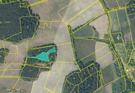 Prodej, les, 13190 m2, Strašice - Škůdra