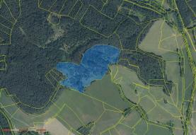 Prodej, les, 52523 m2, Dobršín