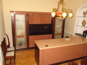 zvýšené přízemí, malý salon s kuchyňským koutem 2 (Pronájem, atypický byt, 5+kk, Praha, 234 m2, ul. Mezibranská), foto 3/36