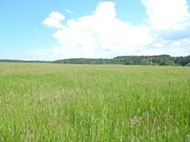 pohled na pozemek  (Prodej, louka, 55942 m2, Jablonné v Podještědí), foto 2/8