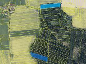 Prodej, les, 12494 m2, Okrouhlá