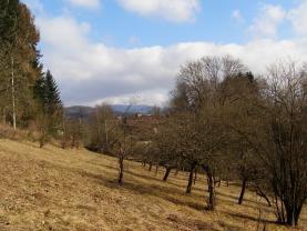 Prodej, pozemek, 3826 m2, Zbečník, Hronov
