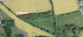 Prodej, ovocný sad 2026 m2, Dolní Lomnice
