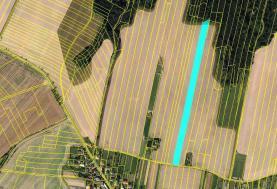 Prodej, orná půda, 775 m2, Tísek