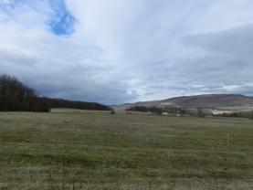 Prodej, pastvina, Žďár u Velkého Chvojna, 27195 m2