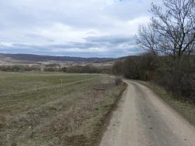 Příjezdová cesta (Prodej, pastvina, Žďár u Velkého Chvojna, 27195 m2), foto 2/6