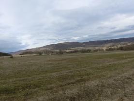 Pohled na pastvinu (Prodej, pastvina, Žďár u Velkého Chvojna, 27195 m2), foto 4/6