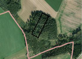 Prodej, lesní pozemek, 9699 m2, Bučina