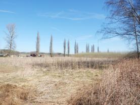 (Prodej, orná půda, 4964 m2, Krapice), foto 4/11