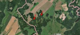 Prodej, les, 14830 m2, Studnice, Hlinsko