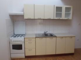 CIMG0378 (Pronájem, byt 2+1, 67 m2, Ústí nad Orlicí), foto 3/13