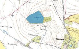 (Prodej, les, 45069 m2, Benešovice u Přelouče)