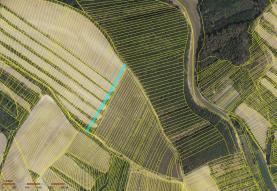 Prodej, orná půda, 2687 m2, Archlebov