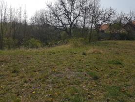 Zahrada (Prodej, zahrada, 2 771m2, OV, Žatec, ul. Adolfa Heyduka), foto 2/14