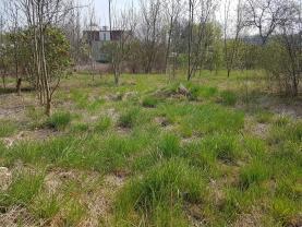 Prodej, zahrada, 2 771m2, OV, Žatec, ul. Adolfa Heyduka