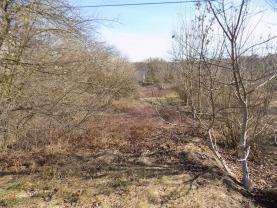 Pozemek (Prodej, zahrada, 2 771m2, OV, Žatec, ul. Adolfa Heyduka), foto 4/14