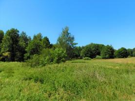 (Prodej, pozemek, 21743 m2, Hazlov, Lipná), foto 4/24