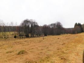 (Prodej, pozemek, 21743 m2, Hazlov, Lipná), foto 4/13