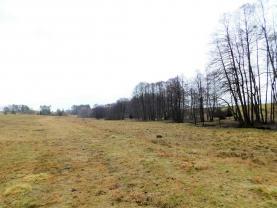 Prodej, pozemek, 21743 m2, Hazlov, Lipná