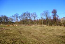 Prodej, pozemek, 10.000 m2, Lázně Bohdaneč