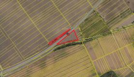 Prodej, pozemek, 6541 m2, Hrušky