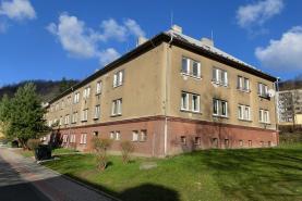 Prodej, byt 2+1, 55 m2, Litvínov, ul. Alešova