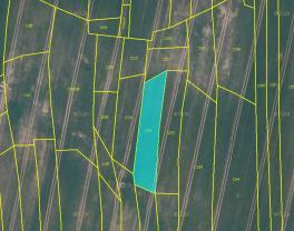 (Prodej, pole, 16839 m2, Vyklantice), foto 4/4