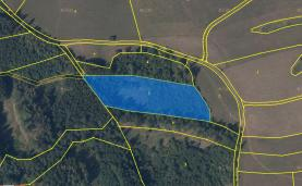 Prodej, lesní pozemek, 11077 m2, Dolní Čermná