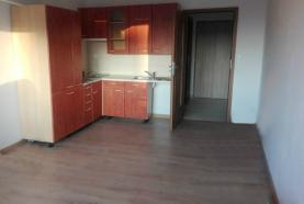 Pronájem, byt 1+1, Ostrava - Fifejdy, ul. Sládkova