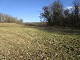 Prodej, ostatní pozemky, 12143 m2, Kaceřov