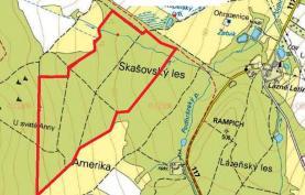 (Prodej, lesní pozemky, 637639 m2, Skašov), foto 2/3