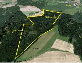 Prodej, lesní pozemky, 637639 m2, Skašov