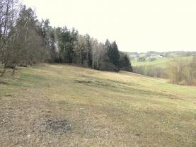 (Prodej, pozemky, 37097 m2, Lčovice), foto 4/11