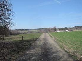 Přístupová cesta (Prodej, louka, Železný Brod), foto 2/8