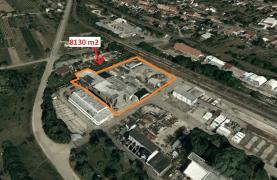 Pronájem, provozní plocha, 8130 m2, Mikulčice, okr. Hodonín
