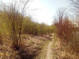 pozemek (Prodej, pozemek, 6735 m2, Český Brod - Zahrady), foto 4/11