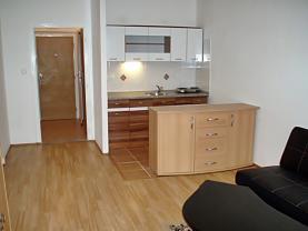 Pronájem, byt 1+kk, 28 m2, Ostrava - Výškovice, ul. Lumírova