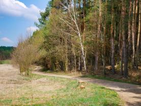 (Prodej, les, 34575 m2, Lužná u Rakovníka), foto 3/11