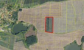 Prodej, pole, 25000 m2, Pičín, okres Příbram