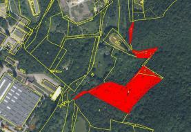 Označení pozemků k prodeji (Prodej, les, 12753 m2, Klášterec nad Ohří, ul. Osvobozená), foto 2/4