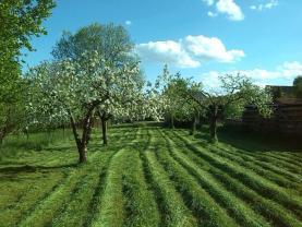 Hnevkovice (Prodej, zahrada, 1793 m2, Týn nad Vltavou, Hněvkovice), foto 2/7