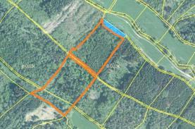 Prodej, lesní pozemky, 31949 m2, Sušno